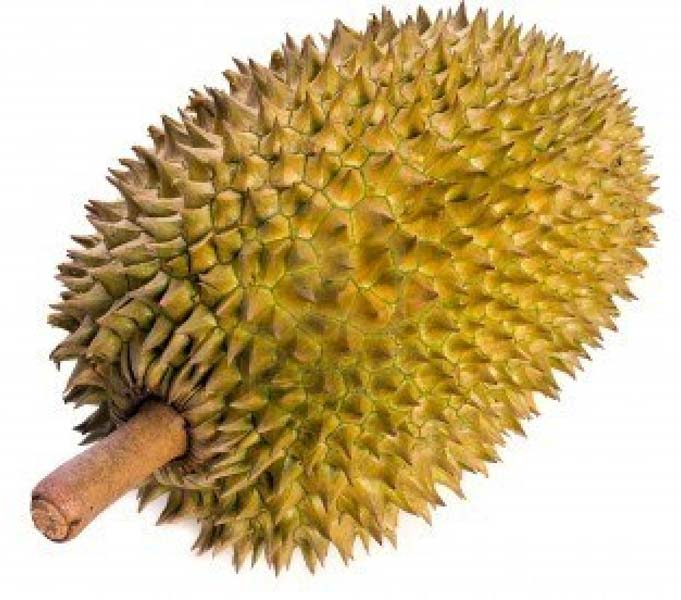 durian fruit eagle fruit
