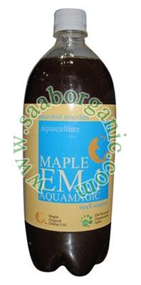 Aquaculture Maple Em.1