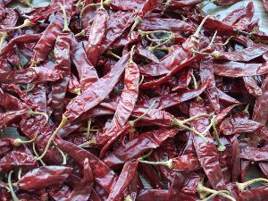 341 Dry Red Chilli