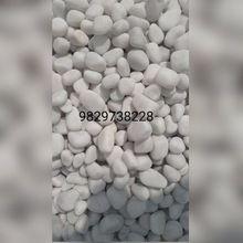 Natural White River Pebble