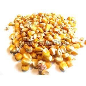 Poultry Maize Feed