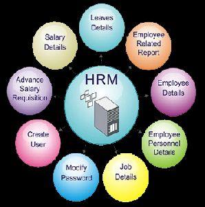 Hr / Payroll Management System Software