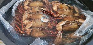 Deep Sea Red Male Crab