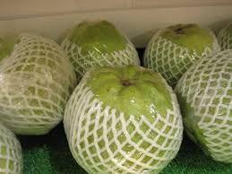 Vnr Thai Guava
