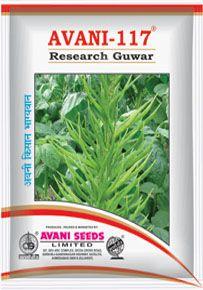 Clusterbean Seeds