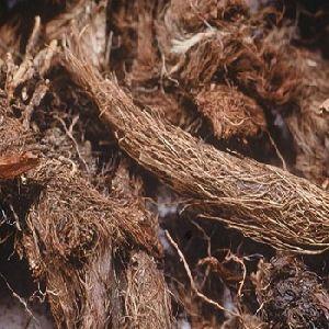 Natural Jatamansi Root