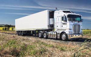 Light Weight Goods Transportation Service
