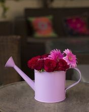 Store Indya Watering Can Handcrafted In Iron