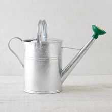 Metal Plant Watering Can