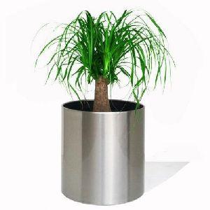 Steel Flower Pot