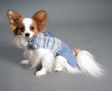 Pet Clothing Dogs