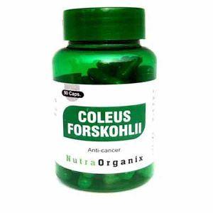 Coleus Forskohlii Capsules