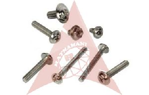 Washer Head Screws
