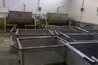 Moong Dal Washing