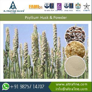 Pysllium Husk Powder