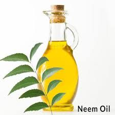Crude Neem Oil