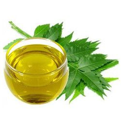 Virgin Neem Oil