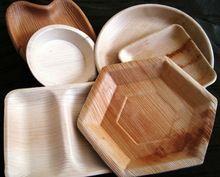 Biodegradable Areca Dinner Plates