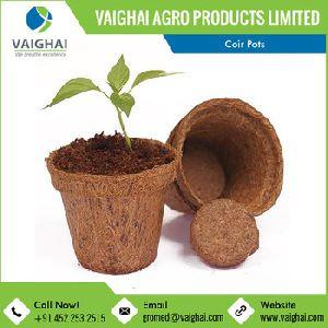 Coco Fibrous Planter Pots