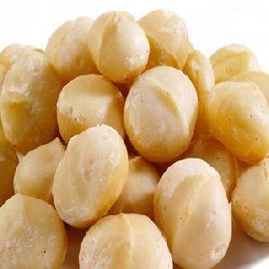 Macadamia Nuts With Shell/ Roasted Macadamia