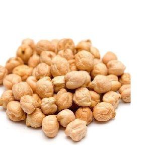 Hazelnuts, Blanched Hazelnuts, Hazelnuts In Shell & Kernels, Organic Hazel Nuts