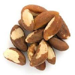Raw Brazil Nuts / Brazil Nuts Philippines/ Organic Brazil Nuts