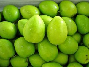 Green Apple Ber Fruit