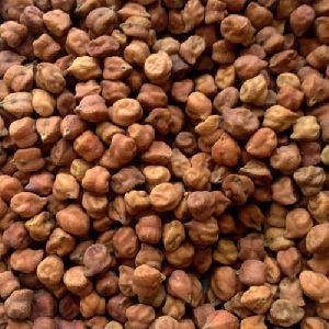 Natural Desi Chana