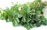 Kasturi Methi Powder And Leaves