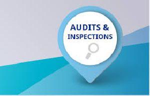 Audit & Inspection Services