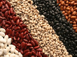 Indian Kidney Beans
