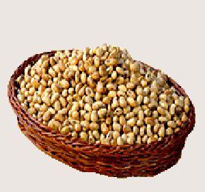 Soya Nuts Diet Snacks