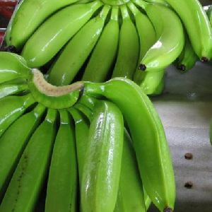 Banana Fruit, Raw Banana, Green Banana