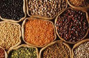 indian grains