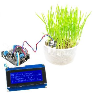 Watering System For Plants
