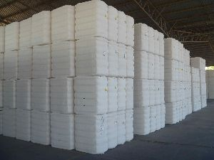 Row Cotton Bales