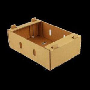 Corrugated Fruit Packaging Box