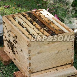 Wooden Beehive Box
