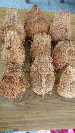 Fresh Semi Husked Brown Coconut