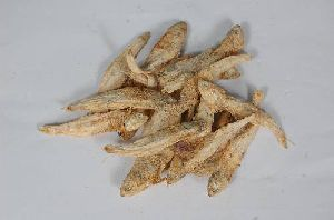 Anchovy With Salt