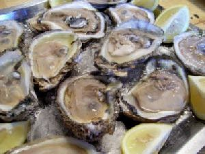 Organic Oyster