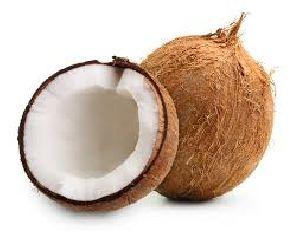 Sami Coconut