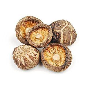 Dry Shitake Mushroom