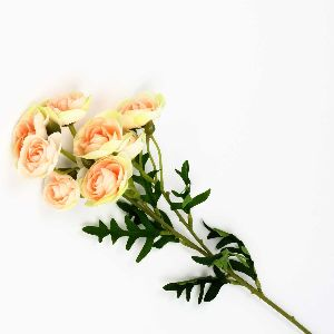 Ranunculus Flower Small
