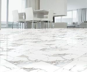 Ceramic Digital Floor Tiles