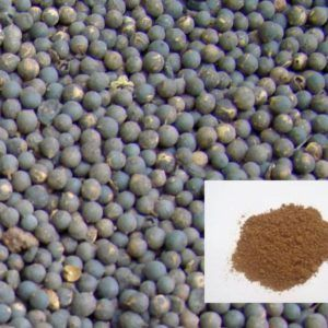 Agar Powder,Ajwain Powder,Akhrot Powder Ahmedabad India