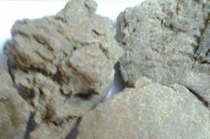 High Grade Moringa Oil Cake