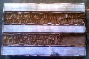 Wooden Carving Around Tracing