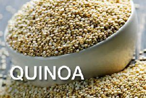 500 Gm Quinoa Seed