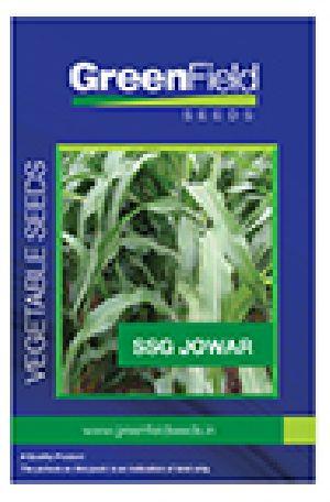 Ssg Jowar Seeds
